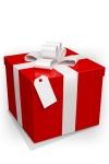 Une pochette cadeau et un noeud raphia assorti.