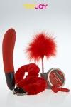 Coffret coquin Just For You No 4 avec 5 articles �rotiques sur le th�me du rouge.