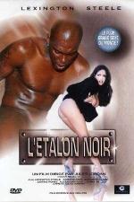 L'�talon noir - DVD - Le plus grand sexe du monde... est black!