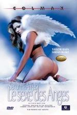 Le sexe des anges - DVD - A la recherche de la jouissance divine.