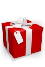 Emballage cadeau - Une pochette cadeau et un noeud raphia assorti.