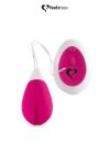 Anna rose de la marque Feelztoys est un joli �uf vibrant rechargeable qui allie un moteur silencieux et une forme ing�nieuse.